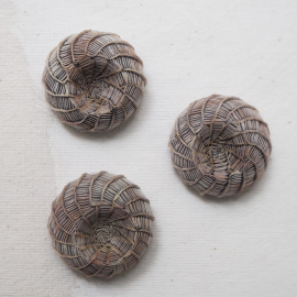 Wood Raffia Coat Button Spiral 37mm